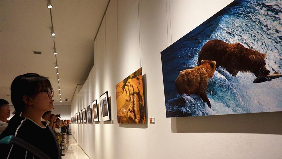 """丝路风情展亮相山东      为期一周的《丝路风情与世界遗产影像艺术展》在山东美术馆亮相,展览汇集了各国摄影师拍摄的百余幅精美照片,展现""""一带一路""""沿线国家的风俗民情和遗产保护。"""